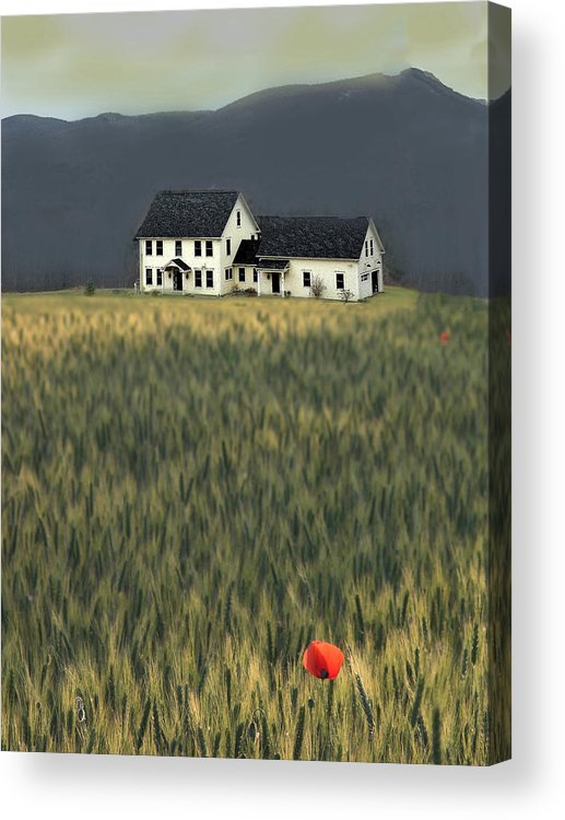 Photo Paintings Acrylic Print featuring the painting Flower Field Series by Sid Katragadda