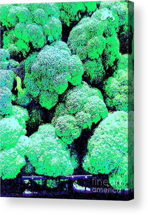 Vegetable Acrylic Print featuring the photograph Broccolo by Linda Wild