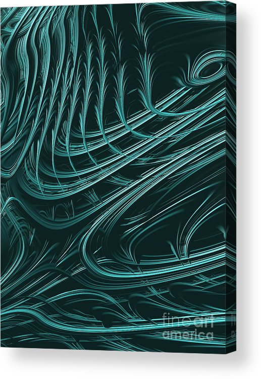 Barb Acrylic Print featuring the digital art Barbed by John Edwards