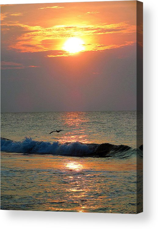 Beach Acrylic Print featuring the photograph Catching An Early Flight by Steve Doris
