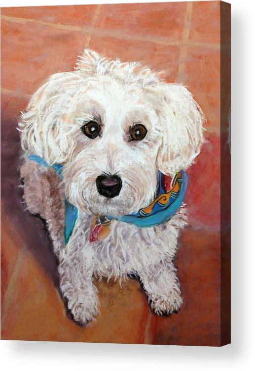 White Acrylic Print featuring the pastel Toby by Julie Maas
