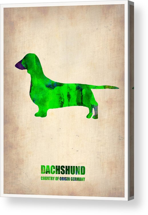 Dachshund Acrylic Print featuring the painting Dachshund Poster 1 by Naxart Studio