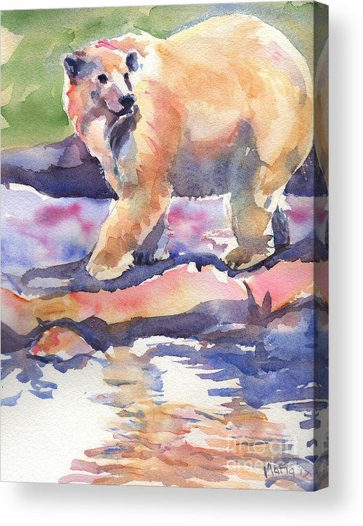 Polar Bear Watercolor Painting Acrylic Print featuring the painting Don't Look Back by Maria's Watercolor