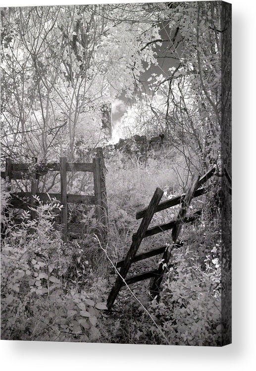 Κρίκελλος Acrylic Print featuring the photograph Entrance To An Old House by Michael Tzacostas