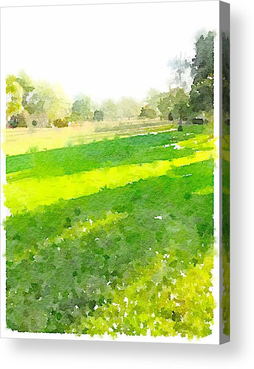 Waterlogue Acrylic Print featuring the digital art Evening Shadows by Shannon Grissom