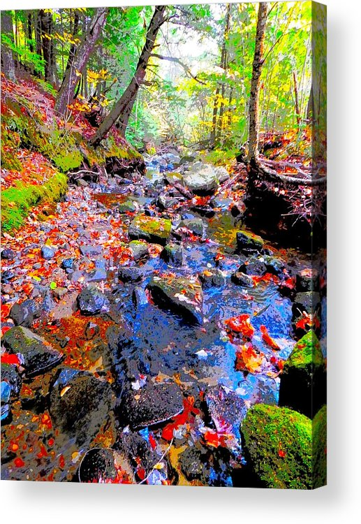 Landscape Acrylic Print featuring the photograph Fall 2014 Y129 by George Ramos