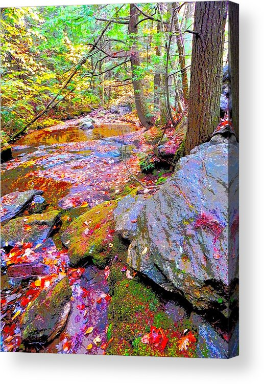 Landscape Acrylic Print featuring the photograph Fall 2014 Y214 by George Ramos