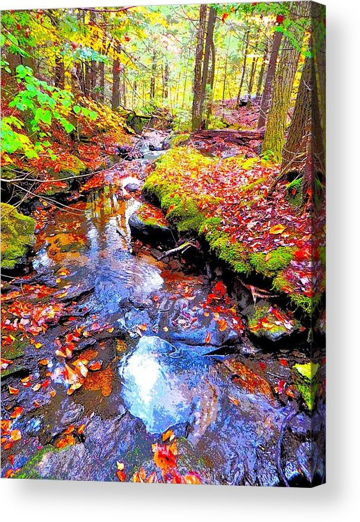 Landscape Acrylic Print featuring the photograph Fall 2014 Y239 by George Ramos
