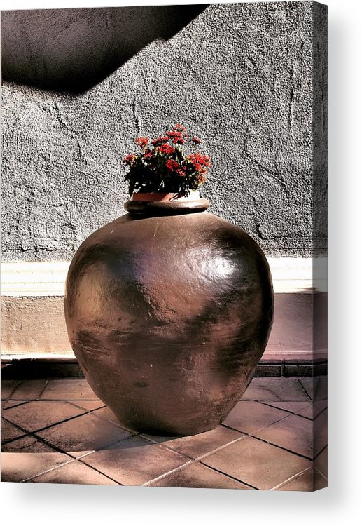 San Diego Acrylic Print featuring the photograph Flowers In A Pot by Bill Grolz