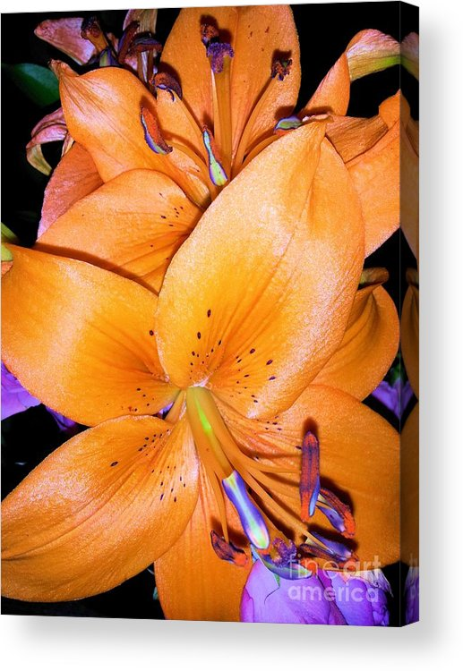 Flower Acrylic Print featuring the photograph Fluorescent Flower by Tahlula Arts