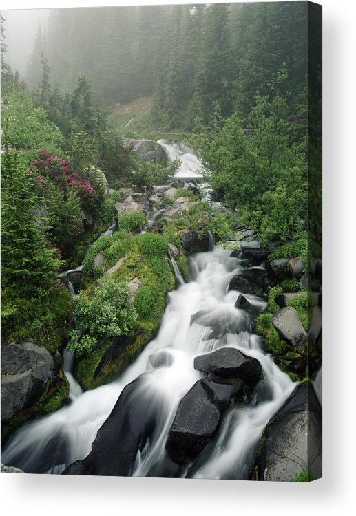 Stream Acrylic Print featuring the photograph Foggy Spring Stream by Glen Wilkerson