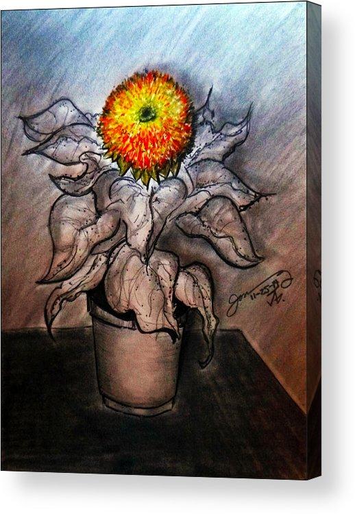 Kat's Teddybear Acrylic Print featuring the drawing Kat's Teddybear by Jose A Gonzalez Jr