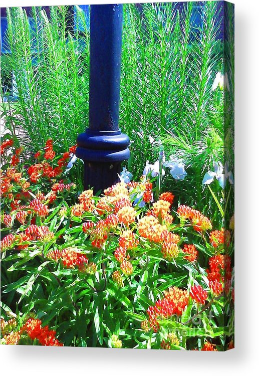 Lampost Acrylic Print featuring the photograph Lampost by Linda Wild
