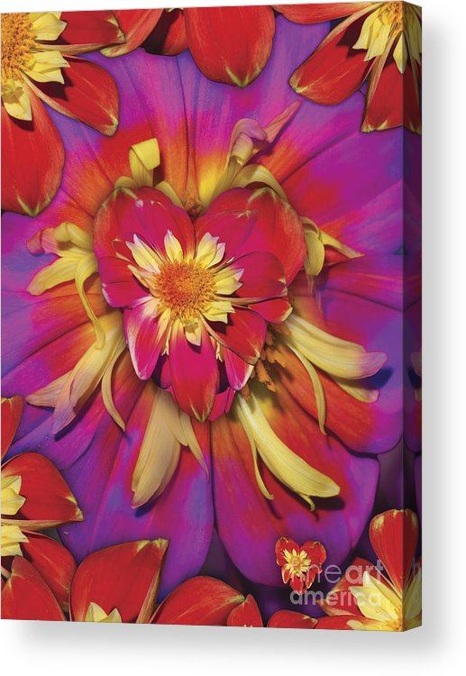 Abstract Acrylic Print featuring the digital art Loveflower Orangered by Alixandra Mullins