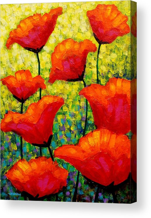 Poppies Acrylic Print featuring the painting Mischa's Poppies by John Nolan