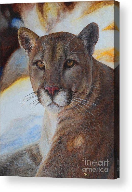 Cat Acrylic Print featuring the painting Mountain Lyin - Watercolor by GD Rankin