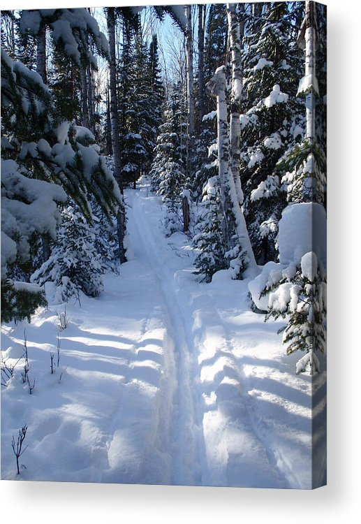 Cross Country Skiing Acrylic Print featuring the photograph Out On The Trail by Sandra Updyke