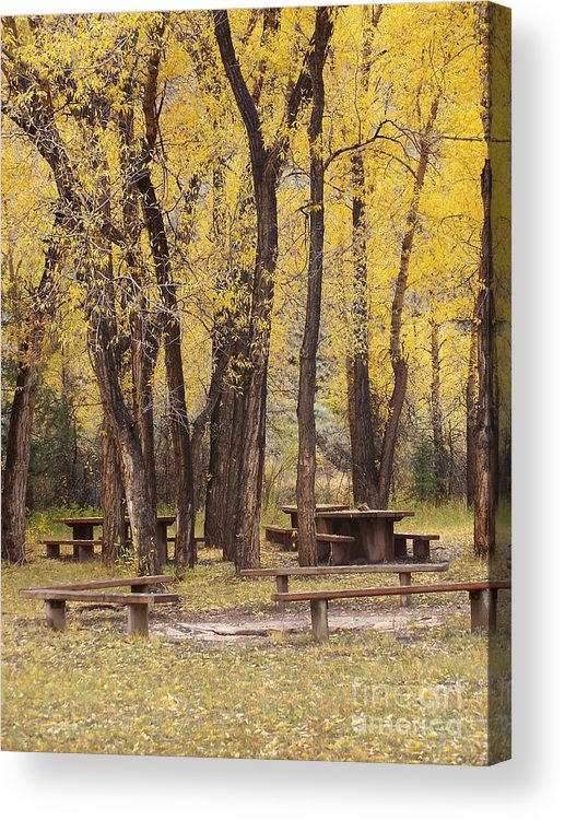 Landscape Acrylic Print featuring the photograph Sheep Creek Canyon Wyoming 13 by Rachel Butterfield