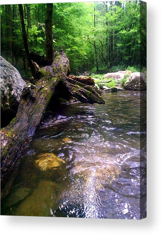 River Acrylic Print featuring the photograph The Fallen by Dwayne Gresham