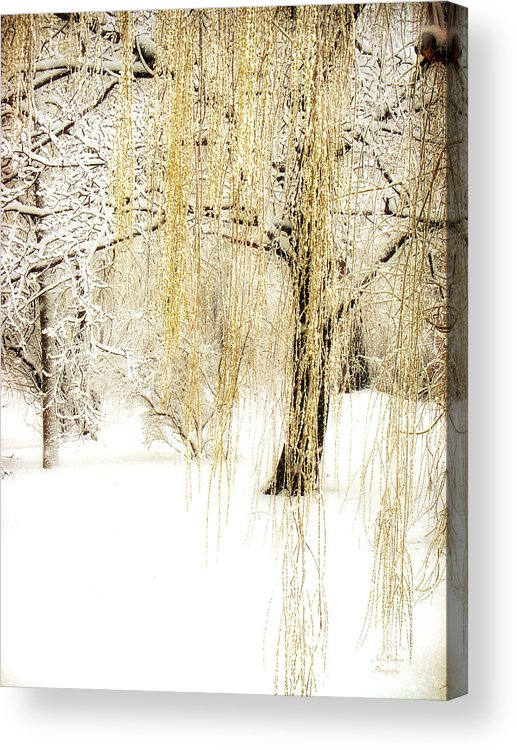 Winter Scene Acrylic Print featuring the photograph Winter Gold by Julie Palencia