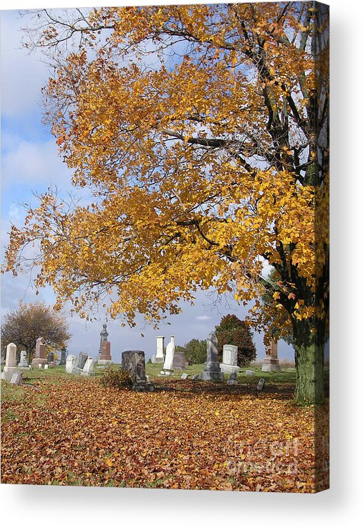 James Teitelbaum Acrylic Print featuring the photograph Wisconsin Boneyard 2 by James T