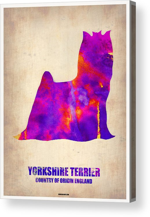 Yorkshire Terrier Acrylic Print featuring the painting Yorkshire Terrier Poster by Naxart Studio