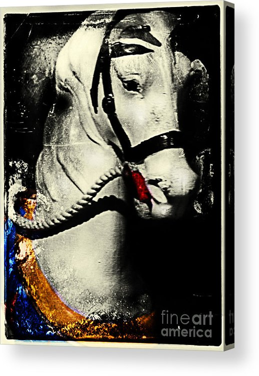 Carousels Acrylic Print featuring the photograph Portrait Of A Carousel Pony by Colleen Kammerer