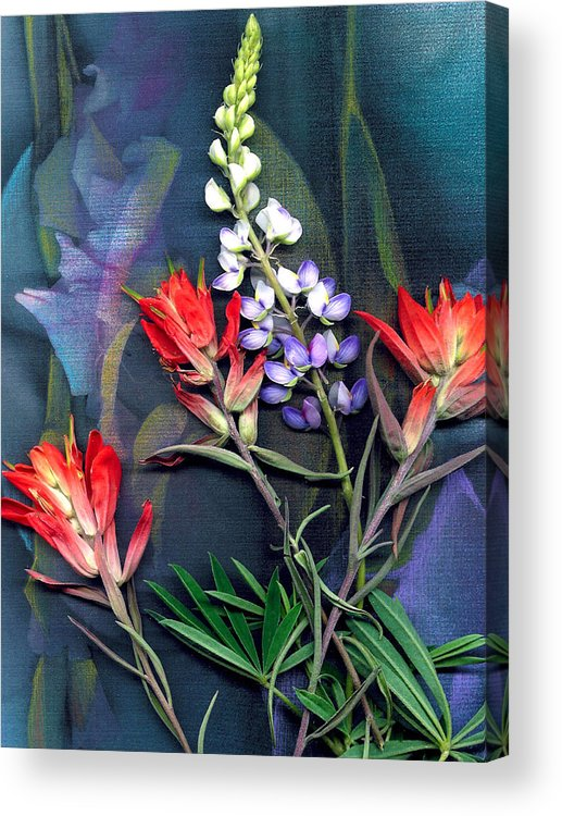 Wild Flowers Acrylic Print featuring the digital art Lupin And Indian Paintbrush by George Page