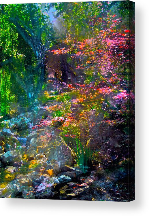 Abstract Acrylic Print featuring the Abstract 86 by Pamela Cooper