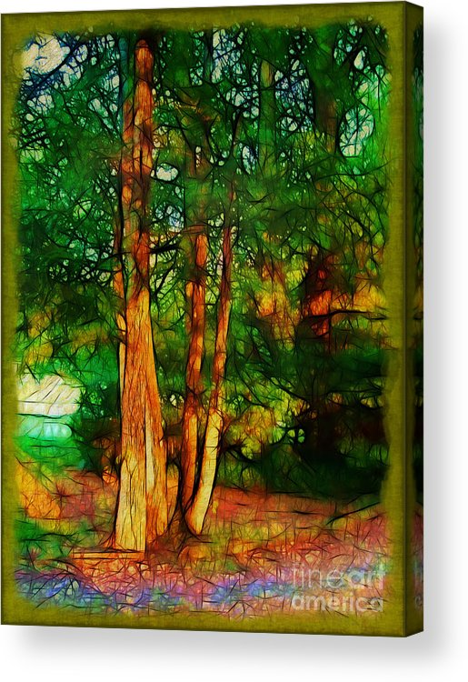 Trees Acrylic Print featuring the photograph Afternoon Delight by Judi Bagwell