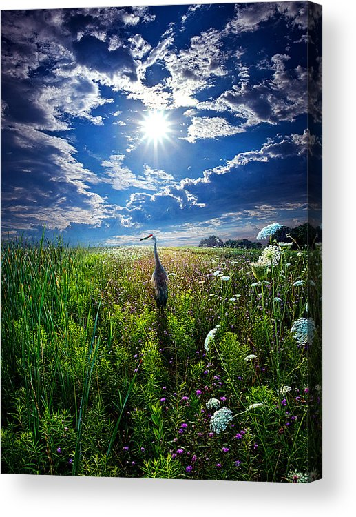 Horizons Acrylic Print featuring the photograph Back Home by Phil Koch