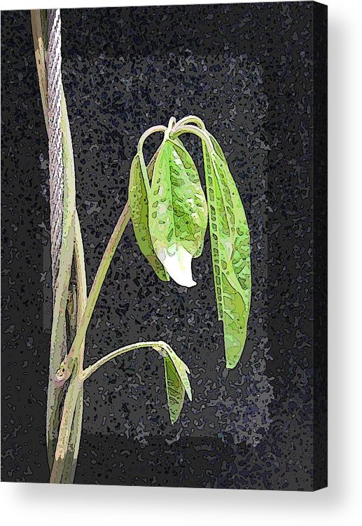 Climb Acrylic Print featuring the digital art Climbing by Tim Allen
