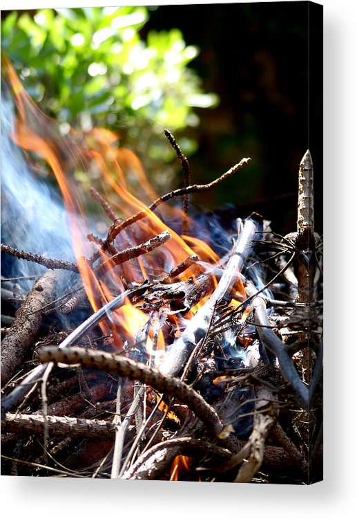 Flame Acrylic Print featuring the photograph Flame by Alessandro Della Pietra