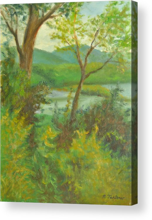Landscape Acrylic Print featuring the painting Hudson Highlands View by Phyllis Tarlow