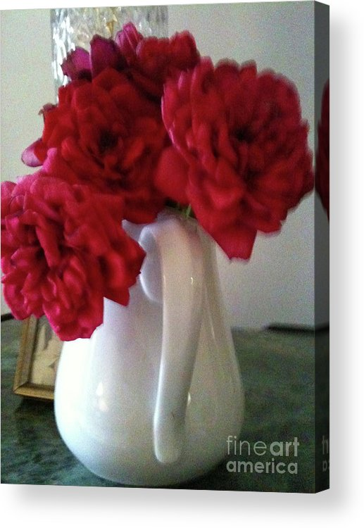 Flowers Acrylic Print featuring the photograph Last Rose by Hannah Lloyd