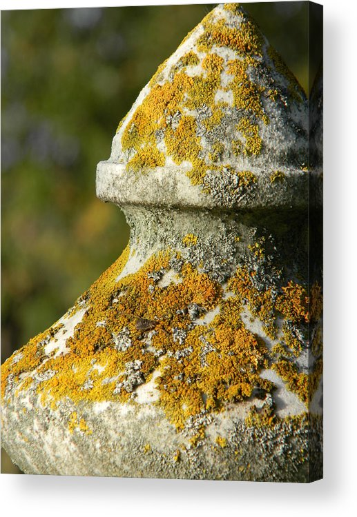 Landscape Acrylic Print featuring the photograph Obelisk by Brandy Fenenga