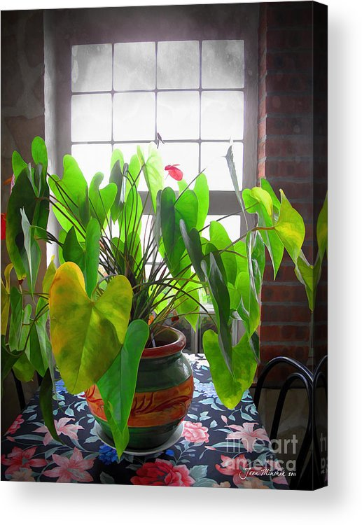Planter Acrylic Print featuring the photograph Planter In France by Joan Minchak