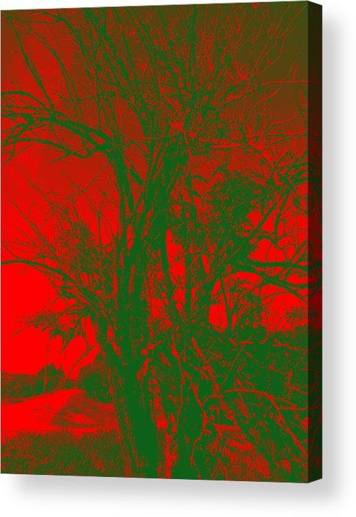 Tree Acrylic Print featuring the digital art Red Tree by Vasil Georgiev