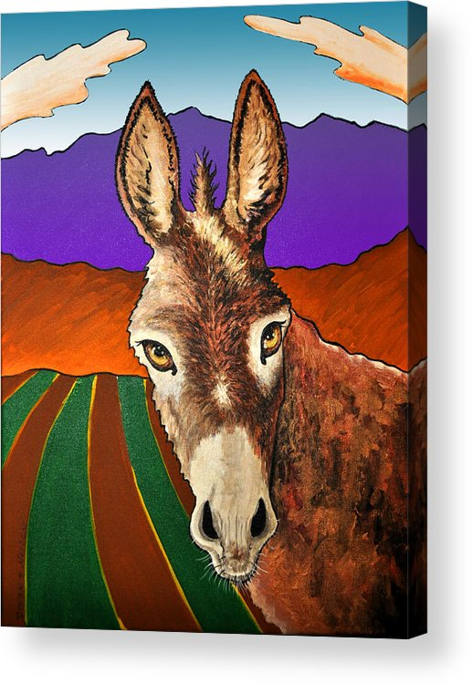 Donkey Acrylic Print featuring the painting Serious Donkey by Phil Dynan