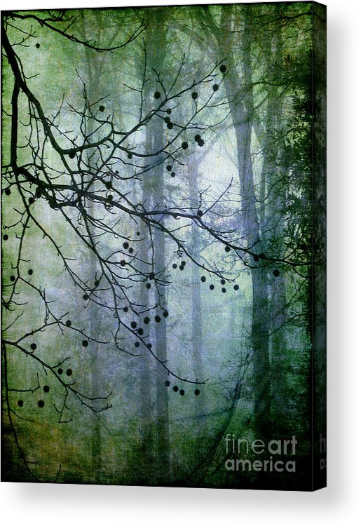 Forest Acrylic Print featuring the photograph The Forest Cathedral by Judi Bagwell
