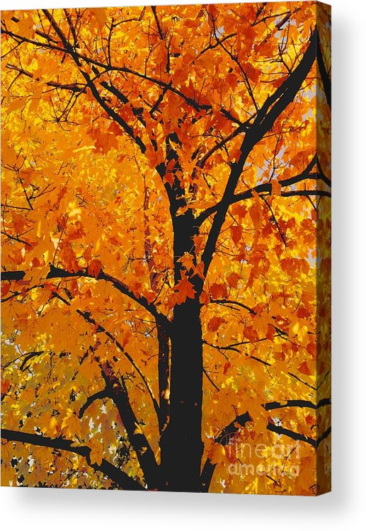 Nature Acrylic Print featuring the photograph 09032015035 by Debbie L Foreman