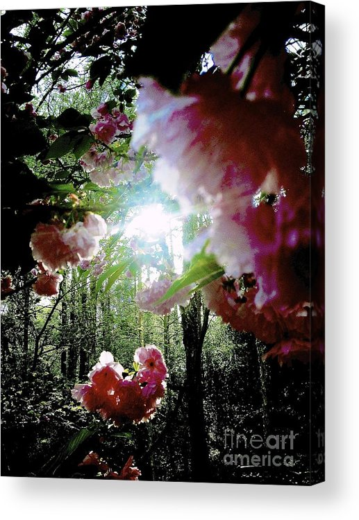 Flower Acrylic Print featuring the photograph 09032015058 by Debbie L Foreman