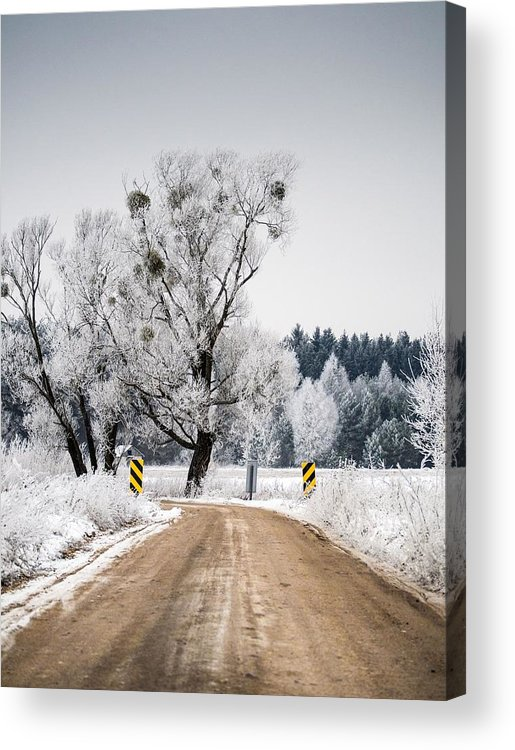 Winter Acrylic Print featuring the photograph Winter Scene by FL collection