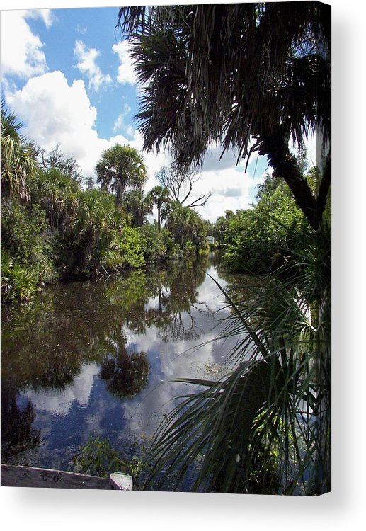 Florida Acrylic Print featuring the photograph a little bit of Florida by Charles Peck