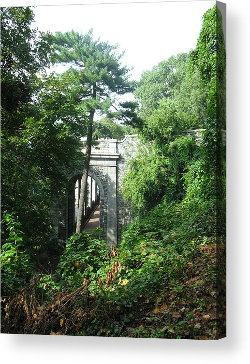 Trees Acrylic Print featuring the photograph Abandoned Passage by Tom Hefko