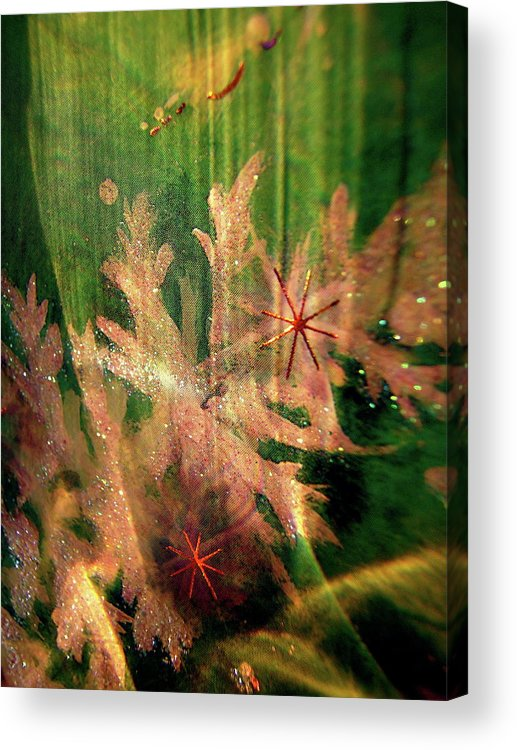 Abstract Acrylic Print featuring the photograph Abstract 1143 by Stephanie Moore