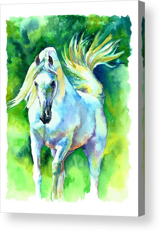 Arabian Horse Acrylic Print featuring the painting Arabian Stallion by Christy Freeman