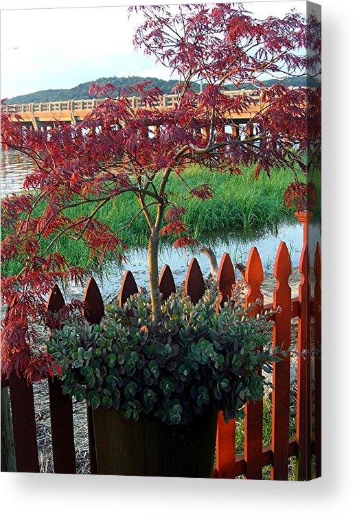 Acrylic Print featuring the photograph Autumn Bridge by Caroline Urbania Naeem