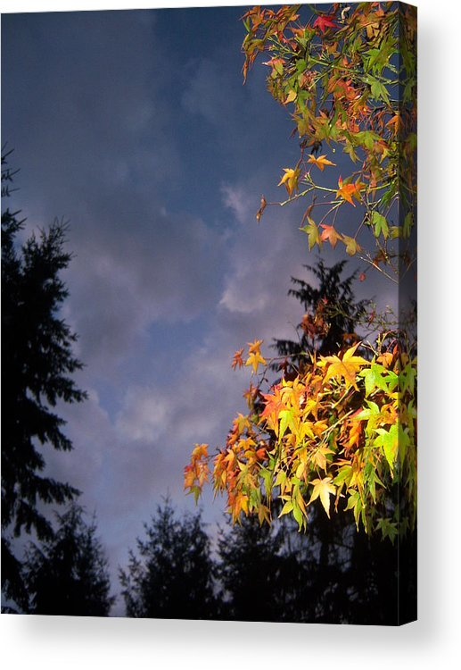Autumn Acrylic Print featuring the photograph Autumn Sky by Ken Day