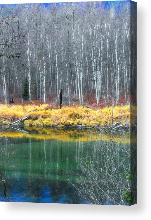 Trees Acrylic Print featuring the photograph Baring Their Souls by Tara Turner